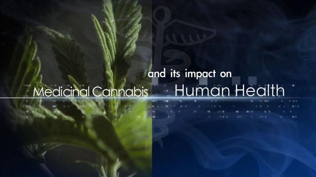 THC Creative Media - Medicinal Cannabis and its Impact on Human Health