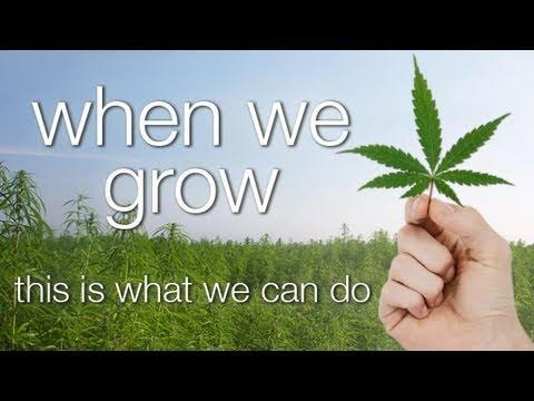 Seth Finegold and Luke Bailey - WHEN WE GROW, This is what we can do (Full Documentary)