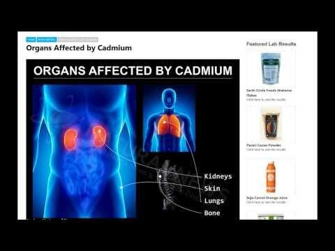Natural News Labs - Why heavy metals are so toxic to your body: lead, cadmium, mercury, arsenic