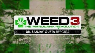 Weed 3 - The Marijuana Revolution Dr Sanjay Gupta