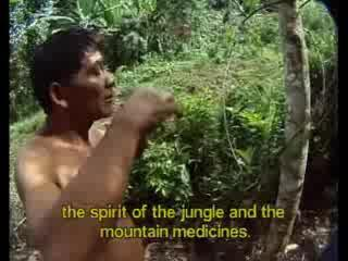 Dean Jeffreys - Shamans Of The Amazon